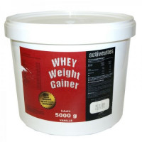 ACTIVEVITES WHEY Weight Gainer, 2500 гр